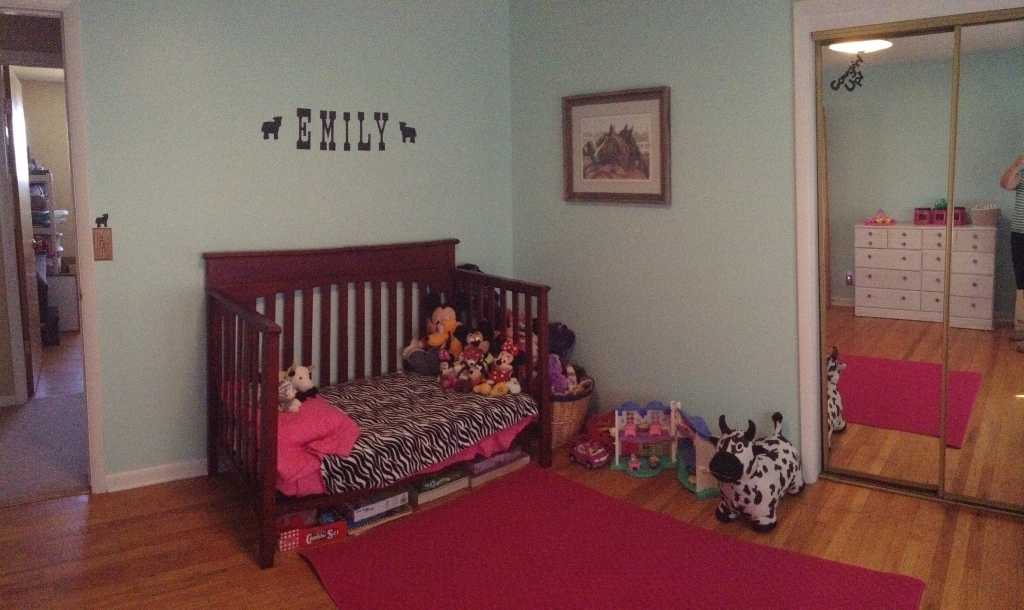 Zebra Cowgirl Room