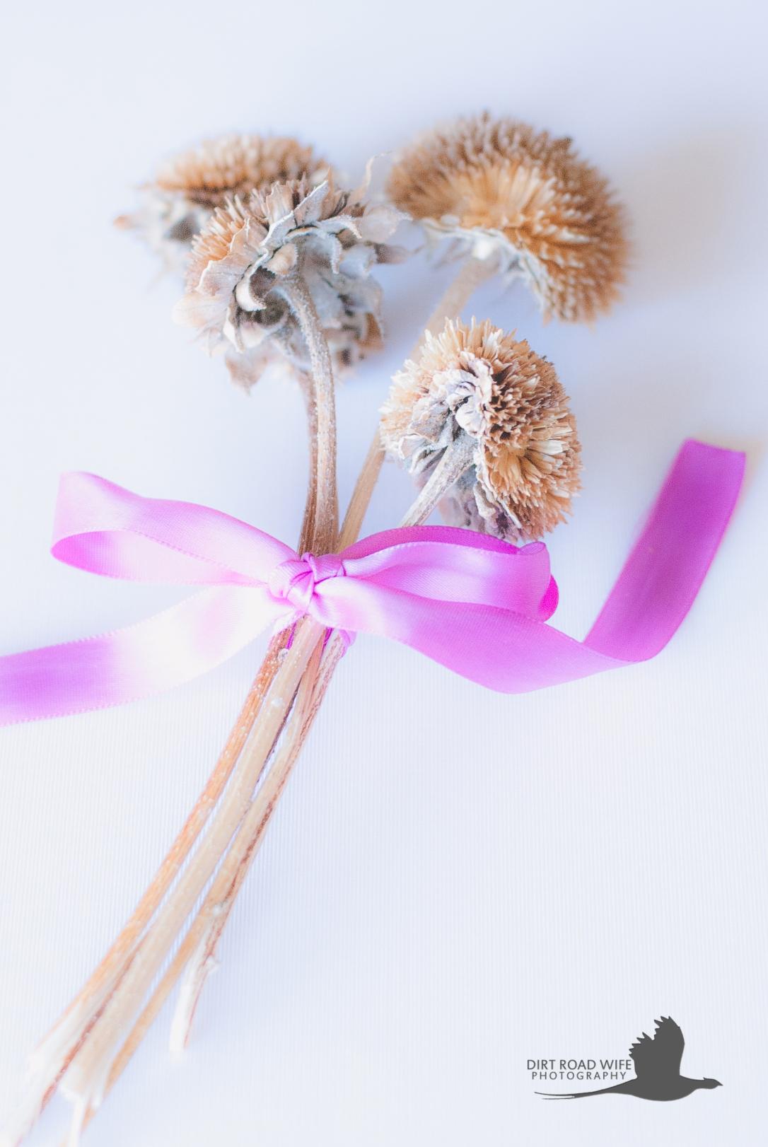 emily-flowers-drw
